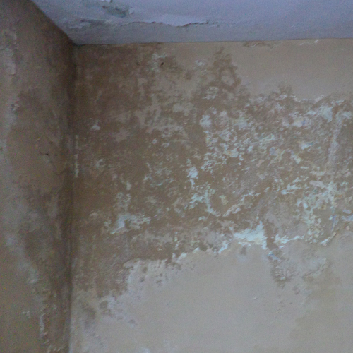 damp walls due to humidity