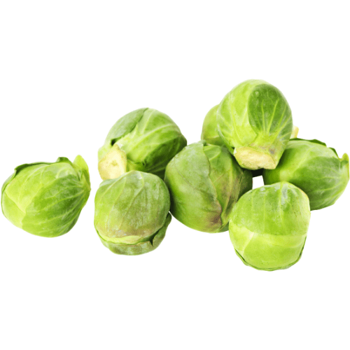 Dogs Can Eat Brussels Sprouts